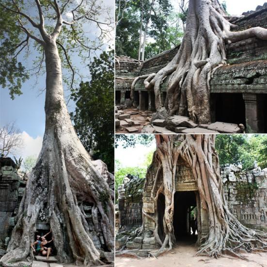 templos_angkor_03